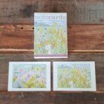 Spring Wild Flower Notecards