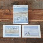 Birds Notecards