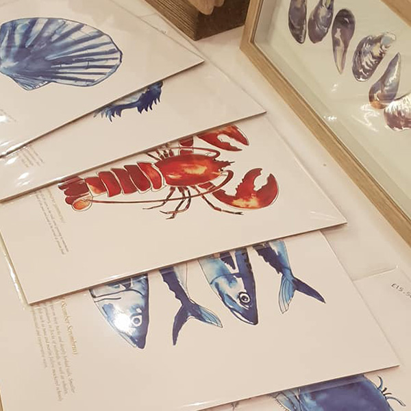 Sea Creature Prints