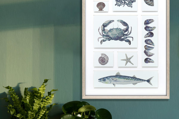 Coastal Collection by Maria Allen